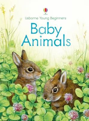 Young Beginners Baby Animals book