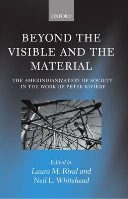 Beyond the Visible and the Material book