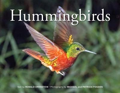 Hummingbirds: 2018 by Ronald Orenstein