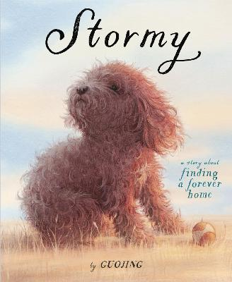 Stormy: A Story About Finding a Forever Home book