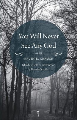 You Will Never See Any God by Ervin D. Krause
