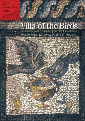 Villa of the Birds book