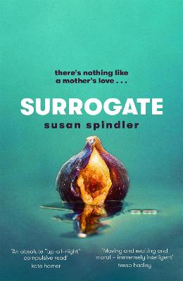 Surrogate: 'An up-all-night compulsive read' Kate Hamer by Susan Spindler
