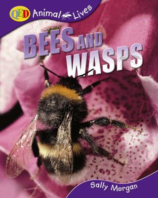 Bees and Wasps by Sally Morgan
