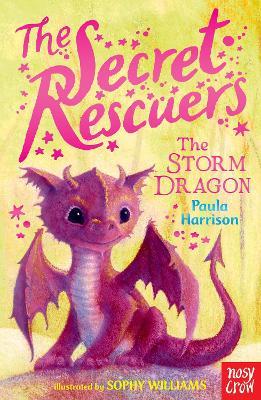 Secret Rescuers: The Storm Dragon by Paula Harrison