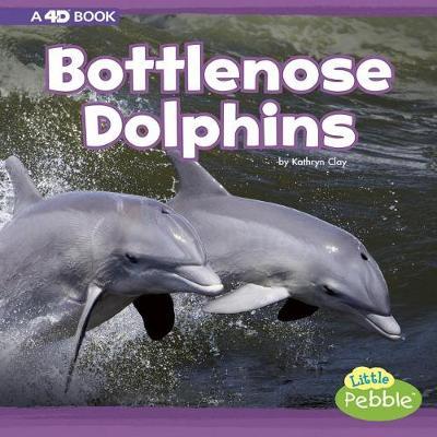 Bottlenose Dolphins book