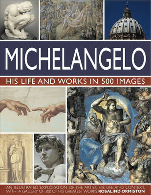 Michelangelo by Rosalind Ormiston