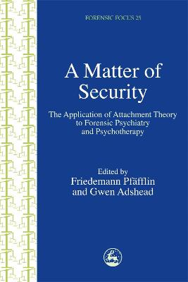 A Matter of Security by Friedemann Pfafflin