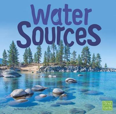 Water In Our World: Water Sources by Rebecca Olien