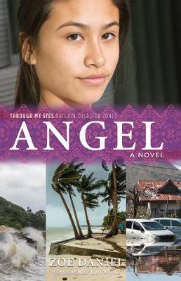 Angel: Through My Eyes - Natural Disaster Zones book