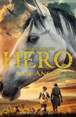 Horse Called Hero by Sam Angus