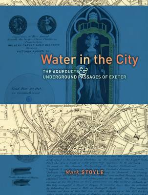 Water in the City by Mark Stoyle