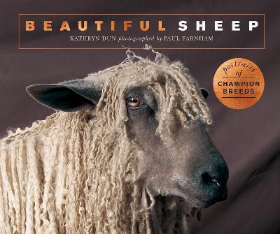Beautiful Sheep: Portraits of champion breeds by Kathryn Dun