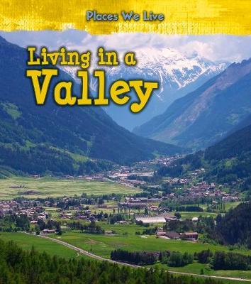 Living in a Valley by Ellen Labrecque