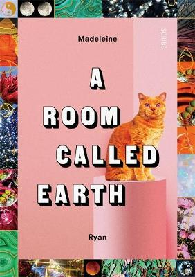A Room Called Earth book