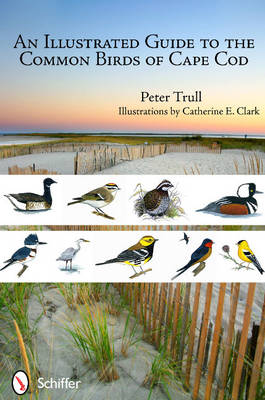 An Illustrated Guide to the Common Birds of Cape Cod by Peter Trull