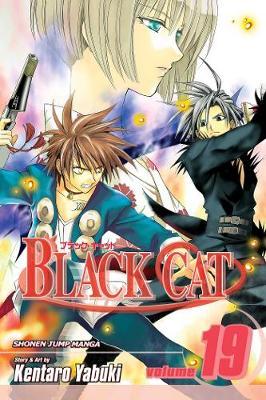 Black Cat, Vol. 19 by Kentaro Yabuki
