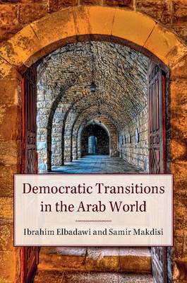 Democratic Transitions in the Arab World book