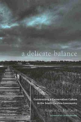 Delicate Balance by Cynthia Barnett