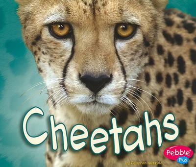 Cheetahs by Deborah Nuzzolo