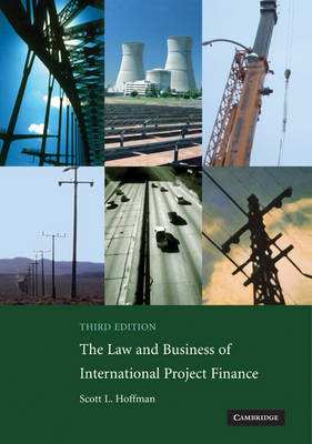 Law and Business of International Project Finance book