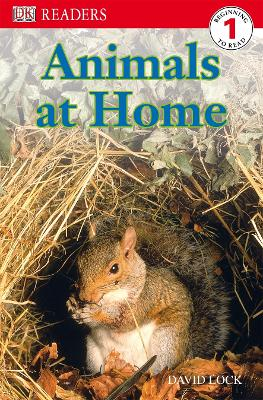 Animals at Home by DK