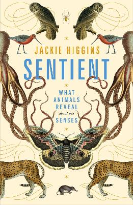 Sentient: What Animals Reveal About Our Senses by Jackie Higgins