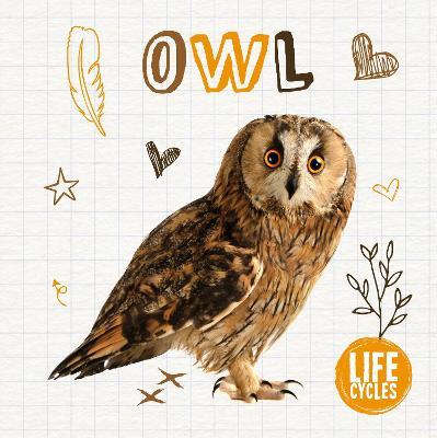 Owl by Madeline Tyler