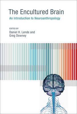 The Encultured Brain by Daniel H. Lende