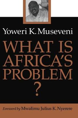 What Is Africa's Problem? book