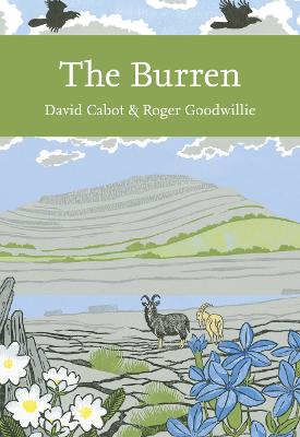 The Burren by David Cabot