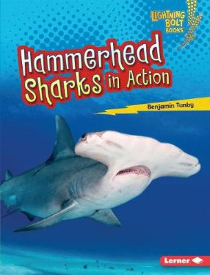 Hammerhead Sharks in Action by Benjamin Tunby