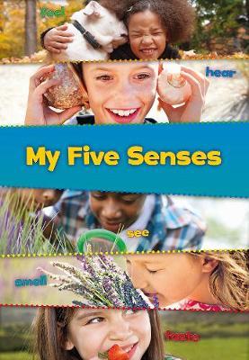 My Five Senses by Joanna Issa