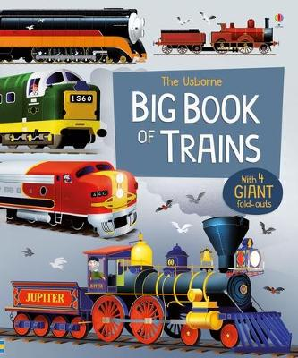 Big Book of Trains by Megan Cullis