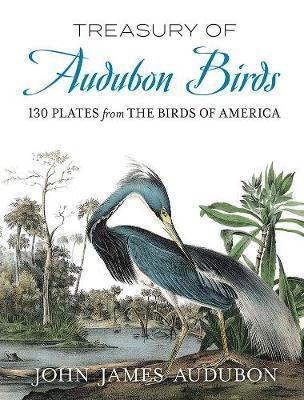 Treasury of Audubon Birds: 130 Plates from The Birds of America book