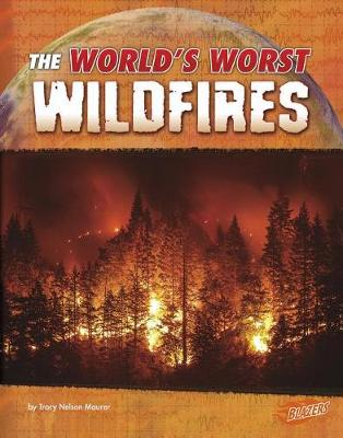 Wildfires by Tracy Nelson Maurer