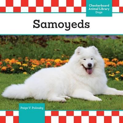 Samoyeds by Paige V Polinsky