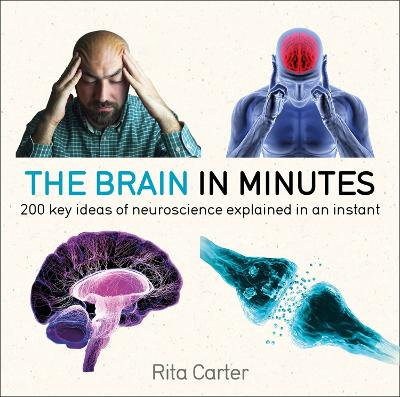 The Brain in Minutes by Rita Carter