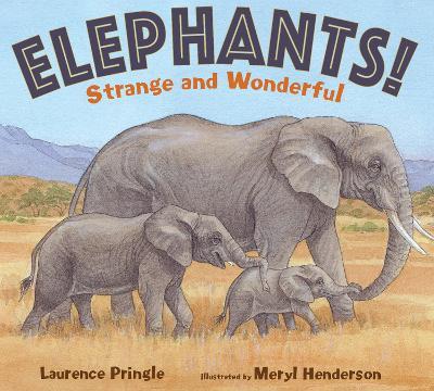 Elephants! book