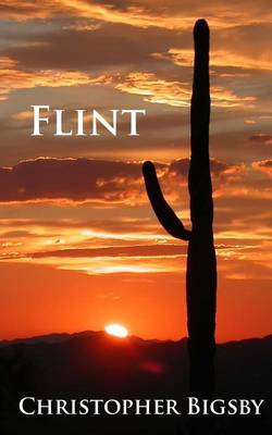 Flint by Christopher Bigsby