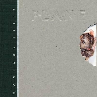 The Plane by Monique Felix