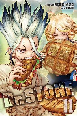 Dr. STONE, Vol. 11 by Riichiro Inagaki