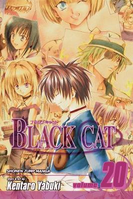 Black Cat, Vol. 20 by Kentaro Yabuki
