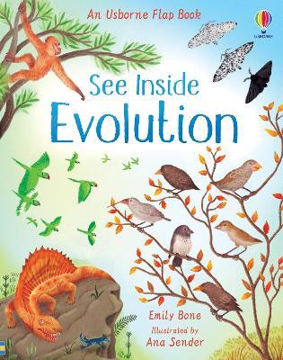 See Inside Evolution by Emily Bone