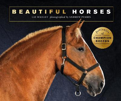 Beautiful Horses: Portraits of champion breeds by Liz Wright