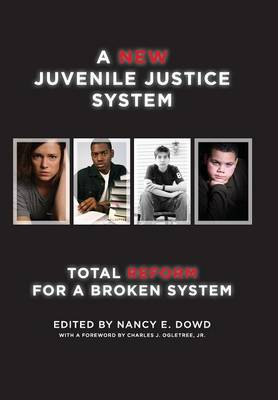 New Juvenile Justice System book