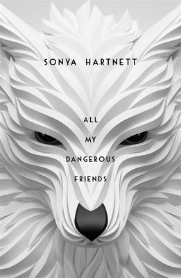 All My Dangerous Friends by Sonya Hartnett