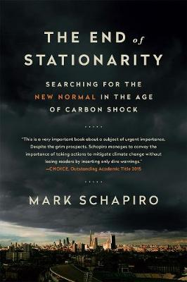 The End of Stationarity by Mark Schapiro
