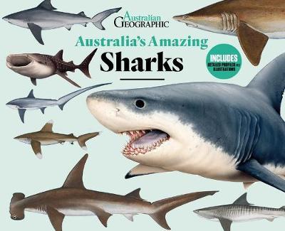 Australia's Amazing Sharks by