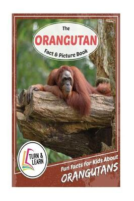 Orangutan Fact and Picture Book by Gina McIntyre